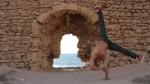 imed-handstand-2