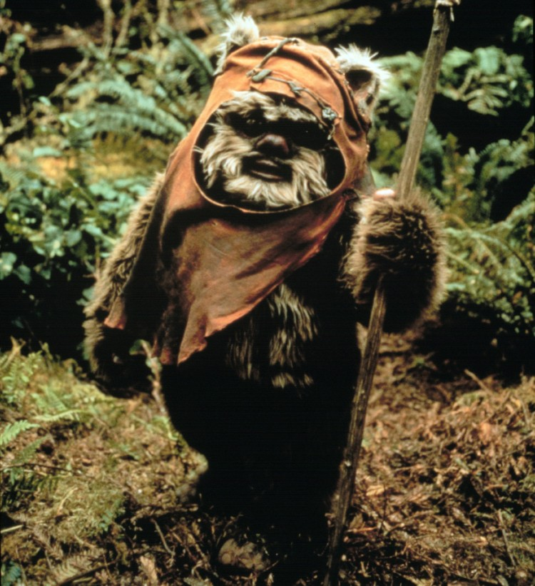 The-Green-Light-In-Eternal-Defence-of-the-Ewoks1-1401x1536