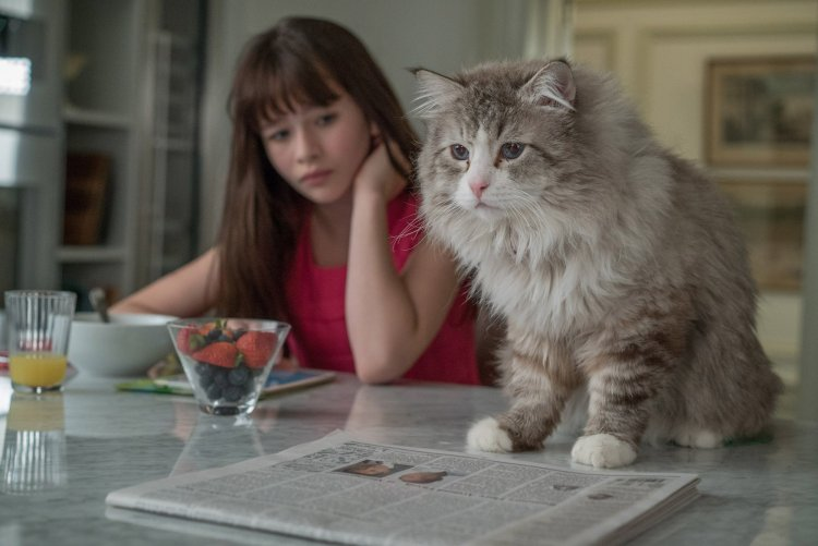 malina-weissman-in-nine-lives